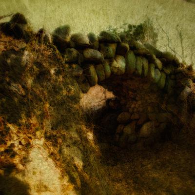 "Rosemary's Farm: ""Life's But A Walking Shadow …"""