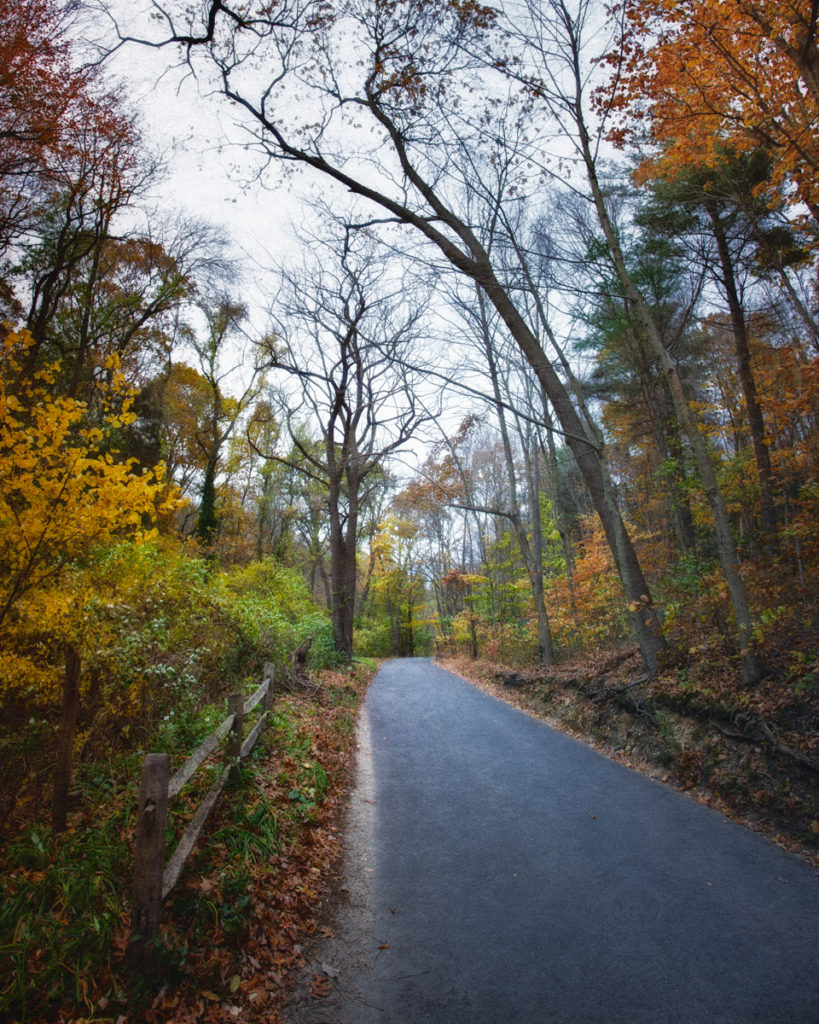 Sweet Hollow Road, Melville, Long Island, New York