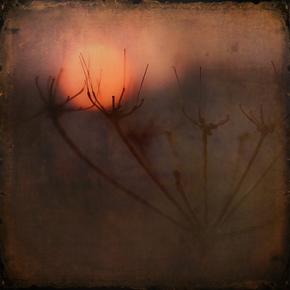 Waiting for the Sun … careening towards the winter solstice, 2016