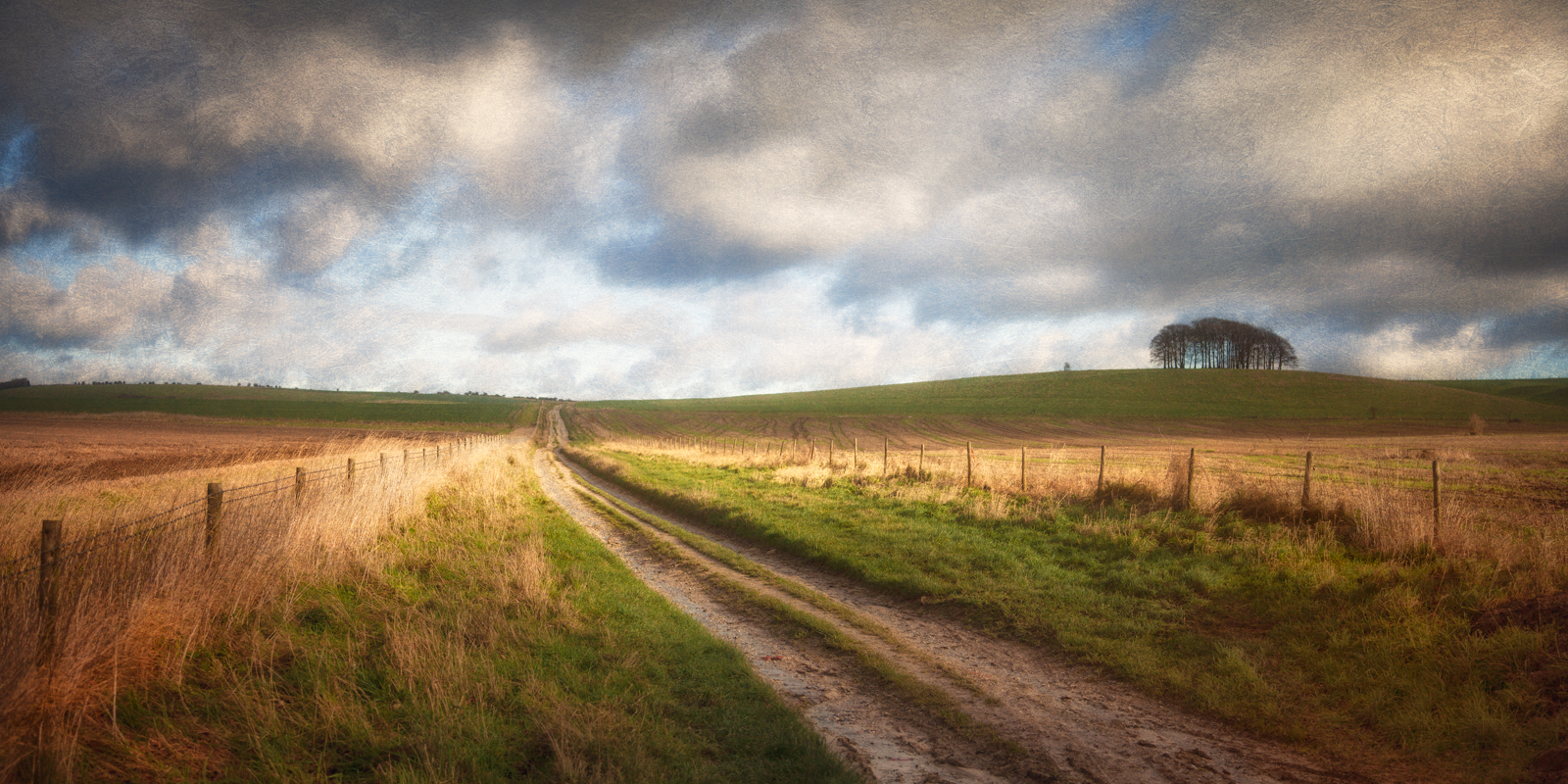 The old track from Marlborough to Bath, near Avebury