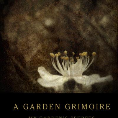 Blackthorn Garden Grimoire – Spiral bound garden journal for all your witch's garden experiments