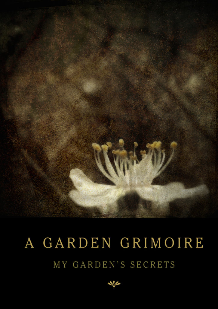 Blackthorn Garden Grimoire – Spiral bound garden journal for all your witch's garden experiments