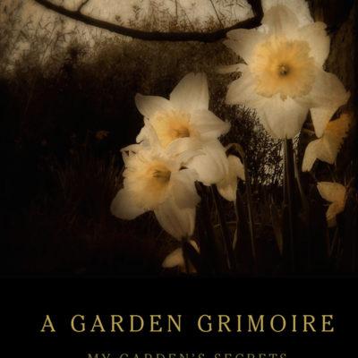 Daffodils Garden Grimoire – Spiral bound garden journal for all your witch's garden experiments