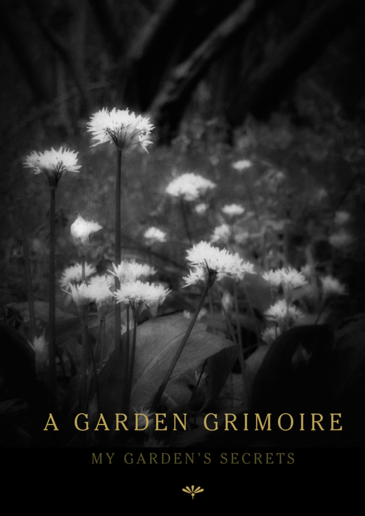 Wild Garlic Garden Grimoire – Spiral bound garden journal for all your witch's garden experiments