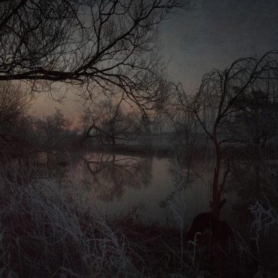 Sunrise, the gift of stillness