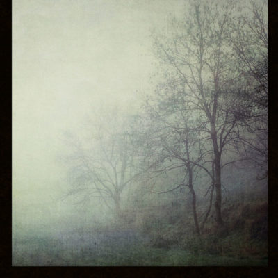 Bare Trees – Blank hard cover journal for your Book of Shadows, for all your witch's secrets