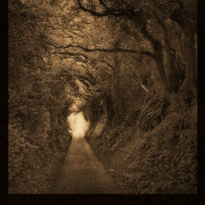 The Woods to Glastonbury Tor – Blank hard cover journal for your Book of Shadows, for all your witch's secrets