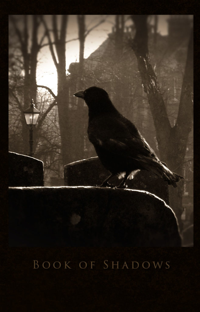 Graveyard Crow – Blank hard cover journal for your Book of Shadows, for all your witch's secrets
