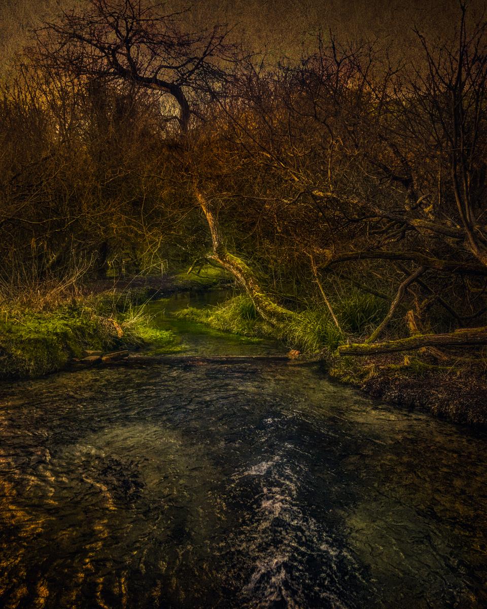 Luccombe Spring near Bratton