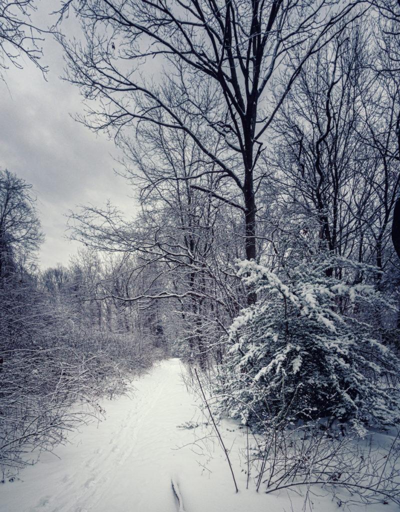 Towards Gwynne Road, once Mt. Misery Road